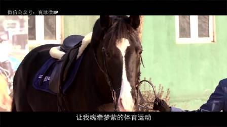 寰球微IP 你心中想要驾驭的那匹马在这