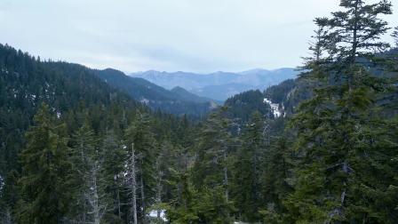 全新雷诺Alpine A110 高山雪地激情驾驶