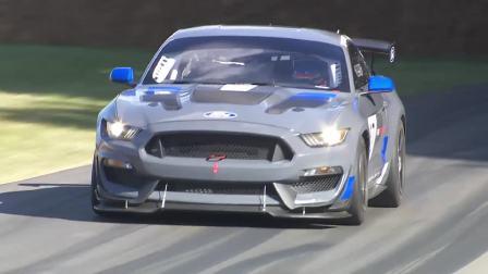 超强拉力车型挑战记录 福特野马