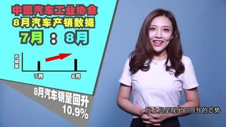 早安汽车 09月19日8月汽车销量回升10.9%