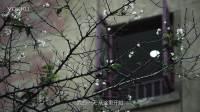 东风启辰视频